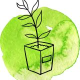 A small plant pot on a watercolour green background